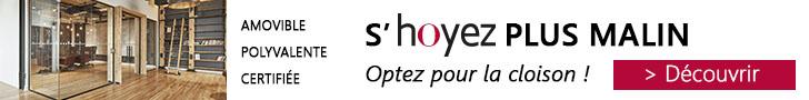 Hoyez PartitionSystems